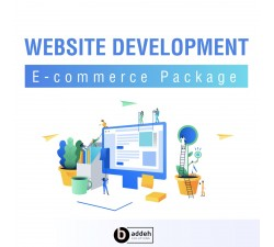 Website Development - E-Commerce Professional