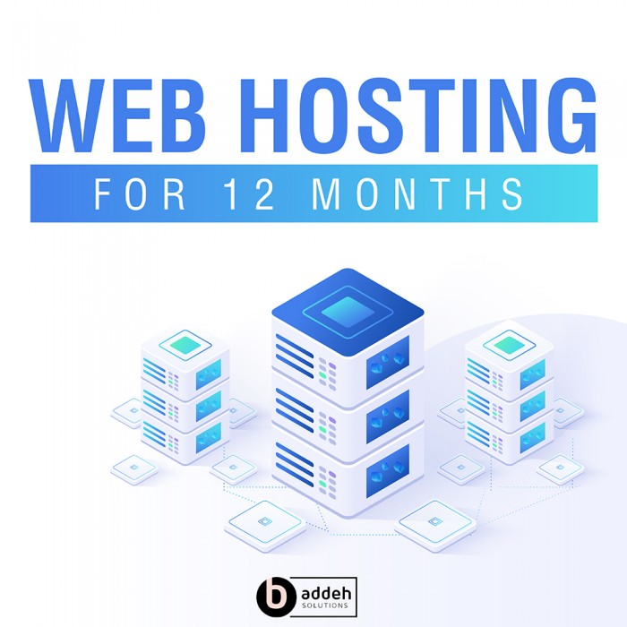 Web Hosting - Basic Package