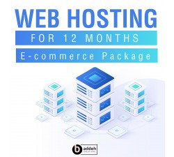 Web Hosting - Professional Package